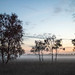 Mist at Dusk on Strensall Common. by Tall Guy