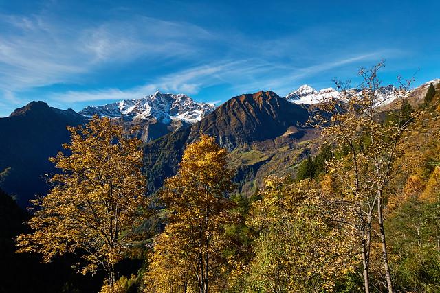 Autumn Valsesia