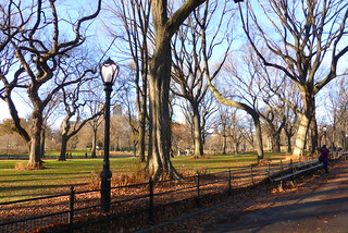 The Mall at Central Park in New York City, NY