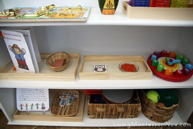 Middle and Bottom Shelves in the Educational Toys, Sensorial, and Math Area