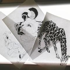 ブックカバーの新柄の下絵、  #fuge #bookcver #bookjacket #elephant #sketch #dessin #drawing #gilaffe #ぞう #キリン #ブックカバー