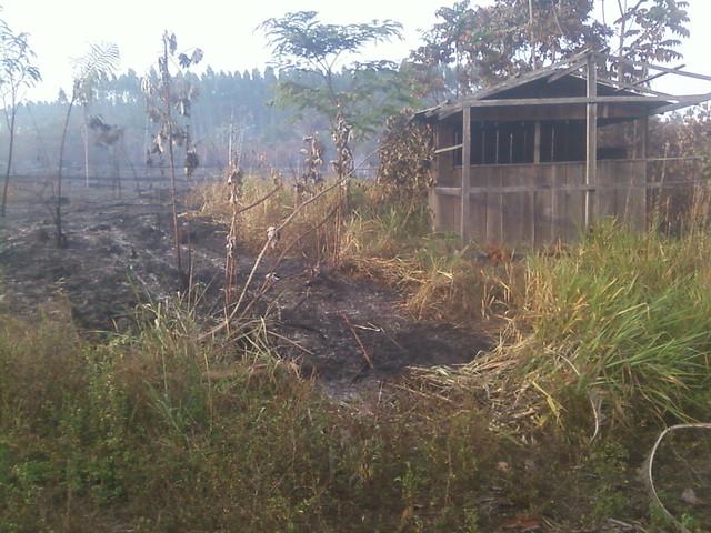 Área queimada no terreno do agricultor - Créditos: Valmir Langer