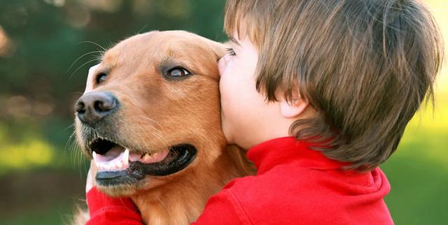 perro con un chico