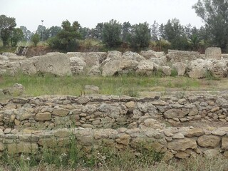 Immagine di Metapontum. history greek stones greece magnagraecia archeology greco archeo archeologia acient scavi ellenistico magnagregia