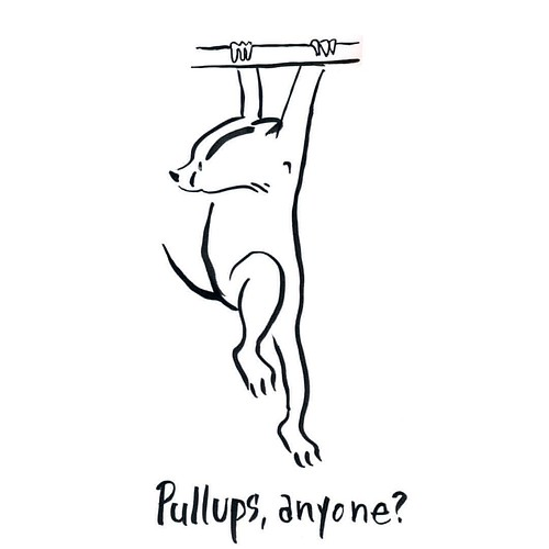 someone is always ready! #pullups #badger #badgerlog #exercise
