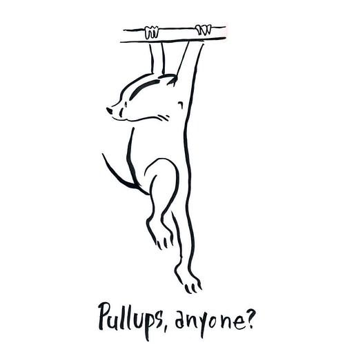 someone is always ready! #pullups #badger #badgerlog #exercise
