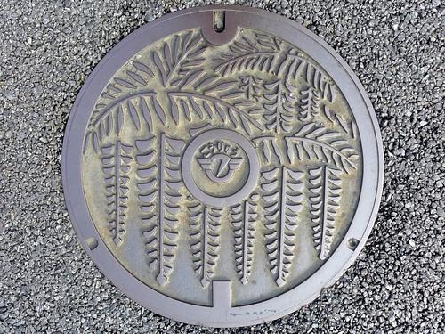 Fujisawa Kanagawa, manhole cover 2 (神奈川県藤沢市のマンホール2)