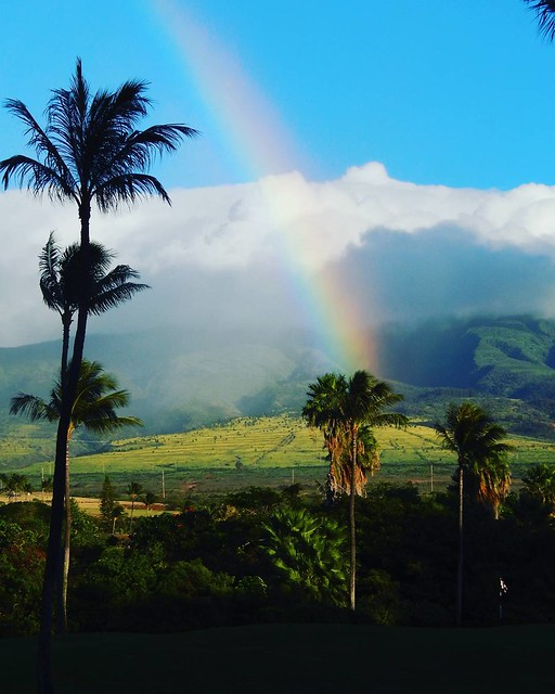 Oh you know, just the fourth rainbow we spotted today. Maui, stop it.