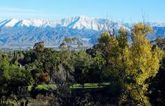 San Bernardino Mountains, Christmas 2016