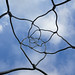 Looking up through a twisted wire sculpture, Barcelona - Explored! by Monceau