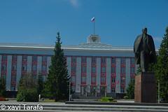 Altai-232-4212