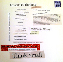 Lessons in Thinking