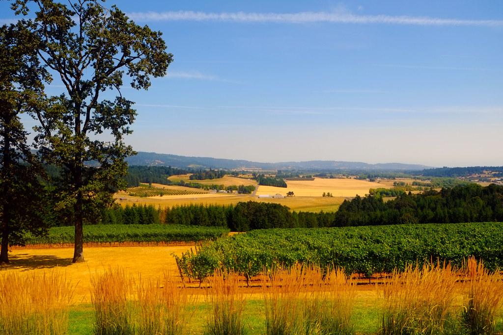 Incredible landscape at Penner-Ash