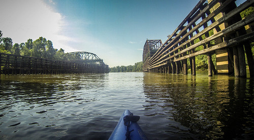 Savannah River Paddling-163