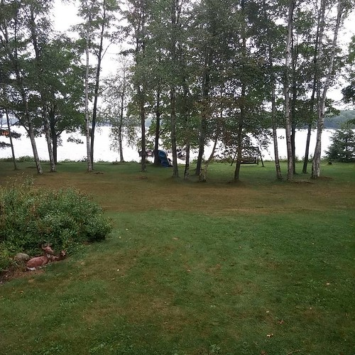 Rainy day #vacation in #rhinelander #summer #nofilter
