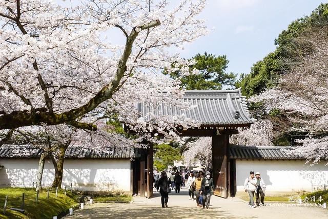 0402D8京都醍醐寺-1160258