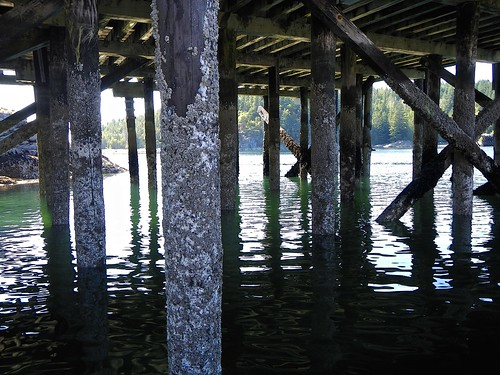 under the wharf | by Dale Simonson
