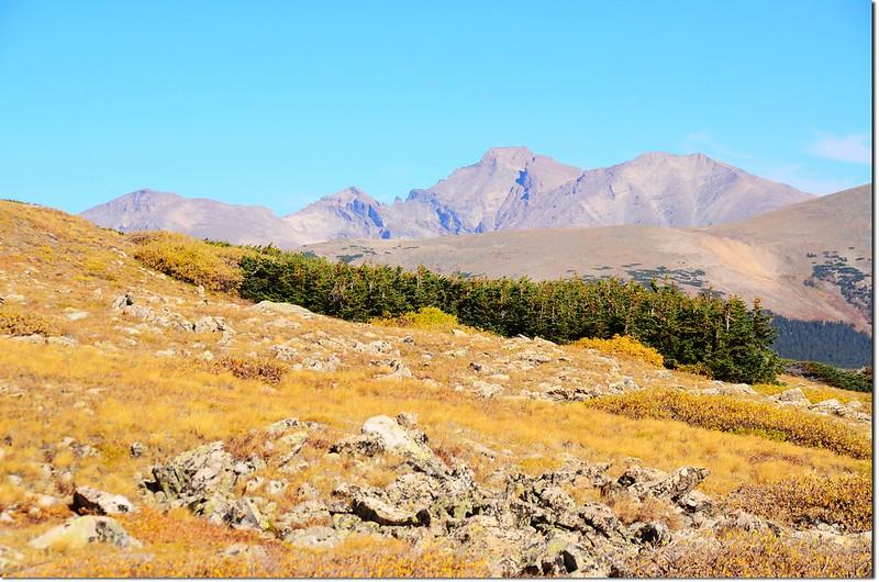 View of Chiefs Head Peak, Pagoda Mt., Longs Peak and Mount Meeker from near the Beaver Creek Trail junction