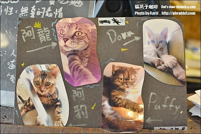 21899809564 3596a99b42 z - [台中]貓爪子咖啡--早午餐豐盛,店內有四隻貓兒超可愛!@北區 大德街 中國醫
