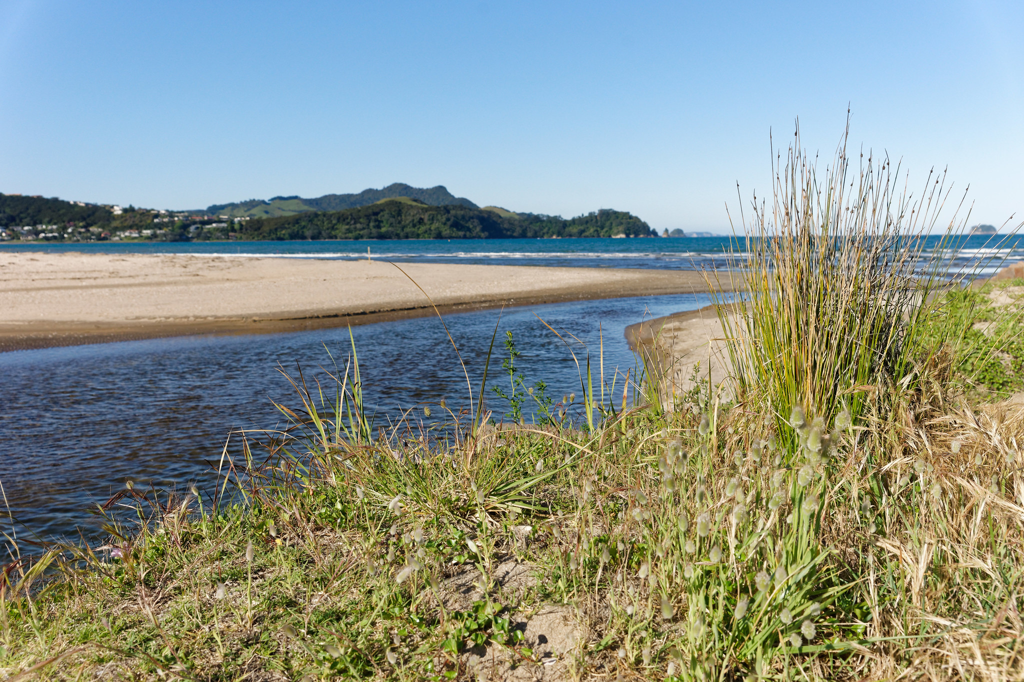 Whitianga Beach