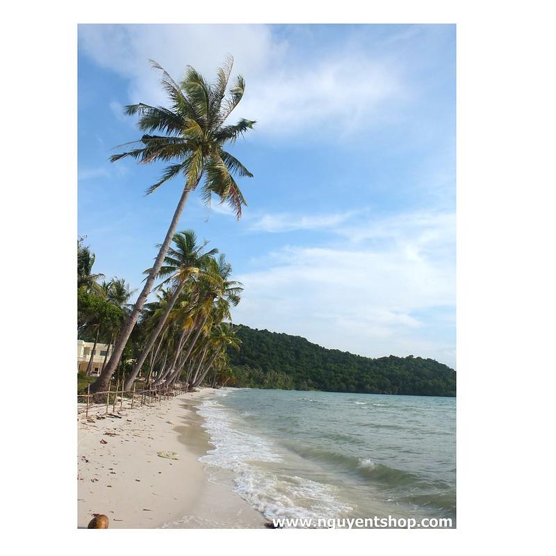 Rừng QG Phú Quốc – Gành Dầu – Bãi Dài – Vũng Bầu (phần 2)