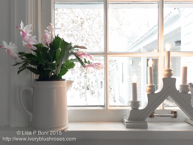2015.12.12KitchenWindowsill