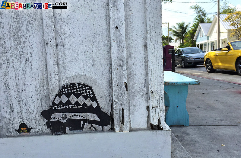 skull with hat & p-nut street art - Key West - 8796