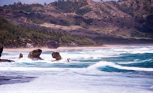 Barbados-2014-02-04-8872