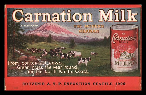 How did Carnation flower as a brand?