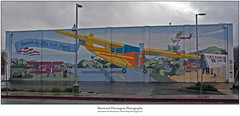 Scotts Valley Library Mural