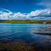 Scapa Flow in summer