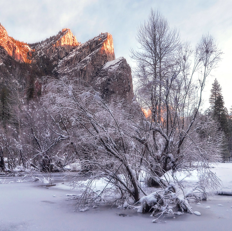 yosemite in winters - snow clad three brothers, frozen merced river & snow covered trees