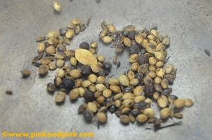 Roasting coriander seeds,black peppercorns,cumin seeds,cardamom  for sukku coffee