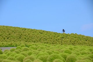 green 06