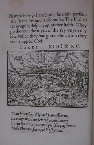Holbein-005x