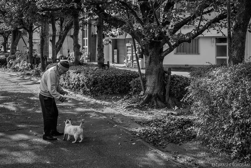 Monochrome Stray Cat #024
