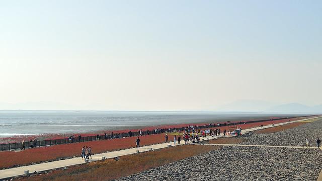 東与賀海岸 Higashiyoka coast