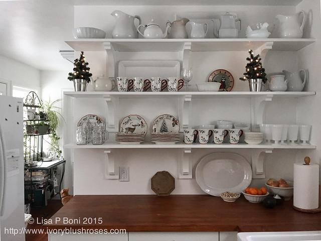 2015.12.KitchenShelves01