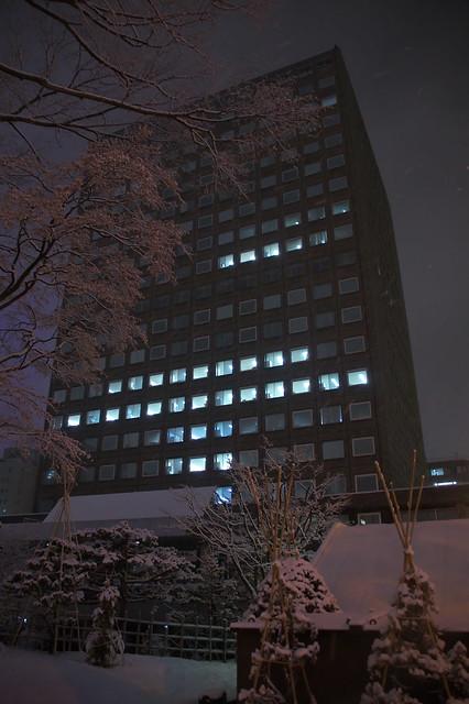 札幌市役所本庁舎 クリスマスツリー_05