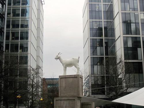 Goat at Spitalfields Market