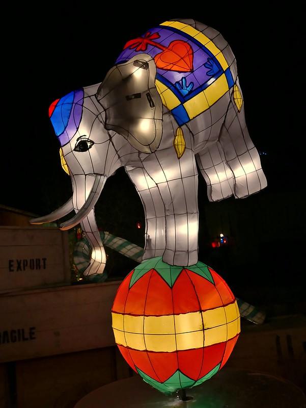 Pour les fêtes de Noël à Metz 23622116151_f6587a1837_c