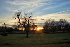 13/365 - Sunrise
