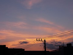 #3771 sunset