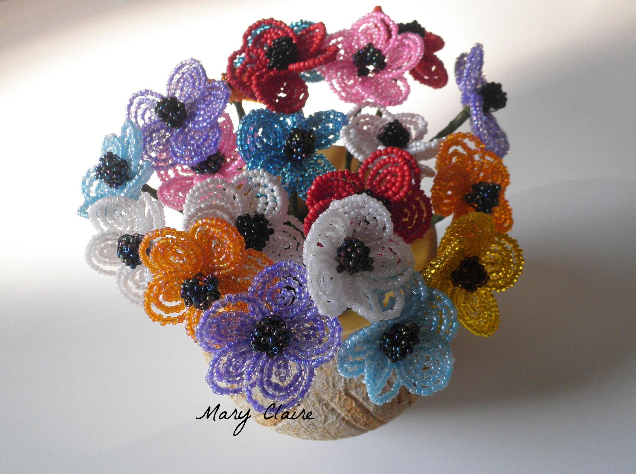 anemoni colorati3