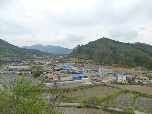 Co-Yeongju-Taebaek-train (14)
