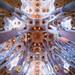 The Ceiling of La Sagrada Familia by Derek Giovanni Photography