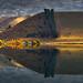 Reflections by Ray Jennings AU