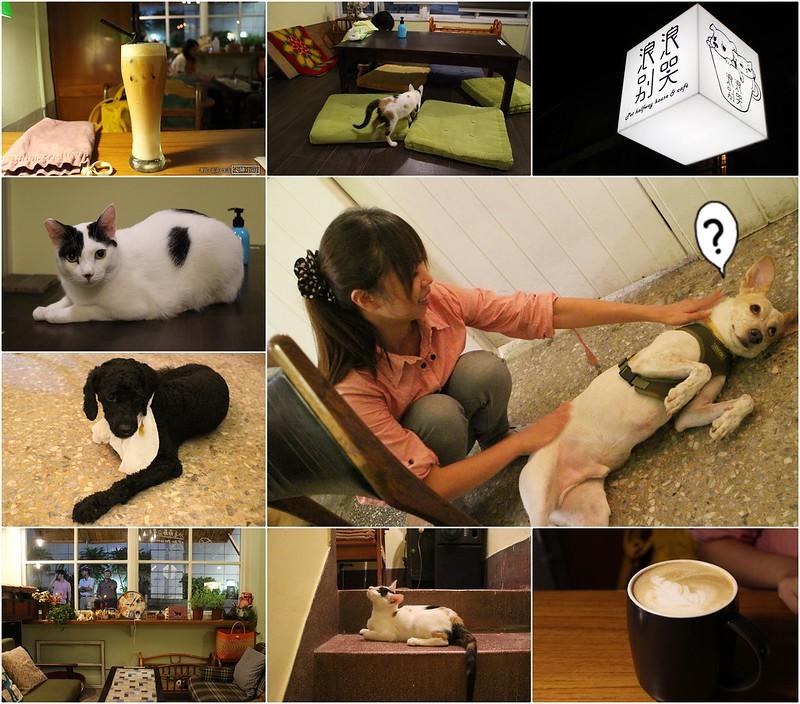 【台北咖啡館】浪浪別哭,中途之家+咖啡廳,流浪貓狗的天地,可帶寵物~近京站、北車