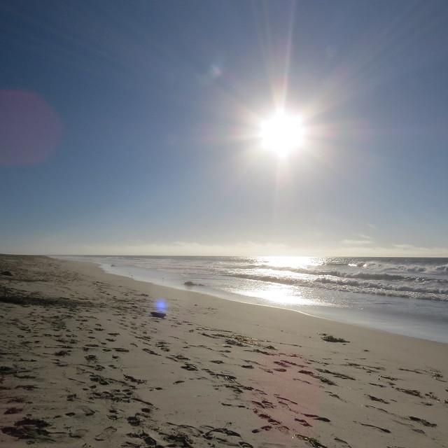 Salinas River State Beach in Moss Landing