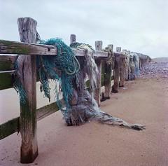 dnlrwlnd   nets